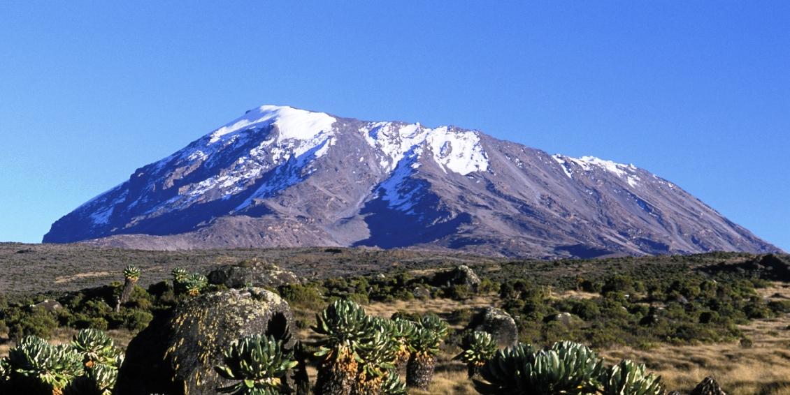 Tanzania Kilimanjaro 6